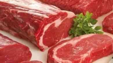 صورة فوائد اكل لحم الجمل واضراره .. تعرف على فوائد وأضرار لحم الإبل ..