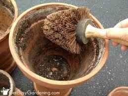 طريقة تنظيف الطاجن الفخار