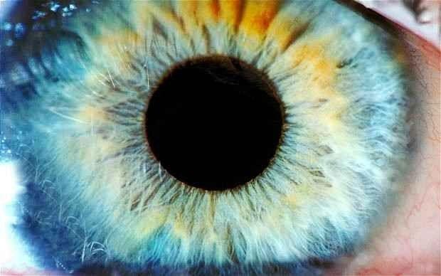 تحمي العين