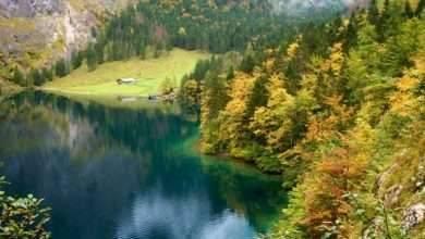 Photo of الطبيعة في ألمانيا… دليلك للتعرف على كل ما يخص طبيعة ألمانيا الخلابة