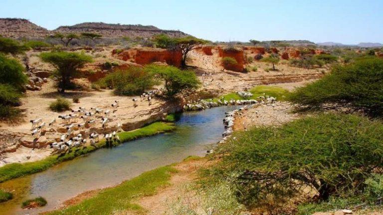الطبيعة في الصومال