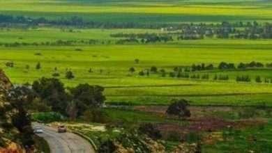 Photo of الطبيعة في ليبيا… إليك كل ما يخص الطبيعة الخلابة في ليبيا من جبال ومحميات ومتنزهات