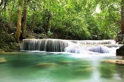 غابة بوكيت الدولية
