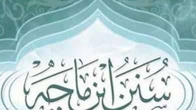 Photo of سيرة حياة ابن ماجة .. المحطات الرئيسية في حياة أحد أبرز الكتاب  عن السنة النبوية