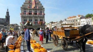 Photo of المسافات بين مدن هولندا… تعرف علي النطاق الجغرافي لمدن هولندا