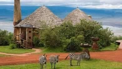 Photo of الطبيعة في تنزانيا .. جمال الطبيعة فى تنزانيا ..
