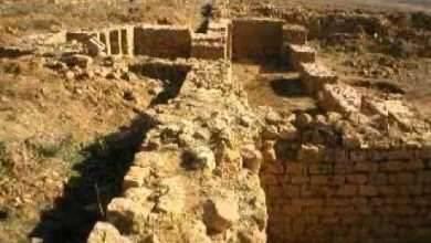 Photo of اسباب سقوط الدولة الزيرية .. تعرف عليها ..