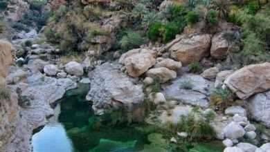 Photo of الطبيعة في محافظة ظفار.. تعرف على أشهر الاماكن السياحية بها