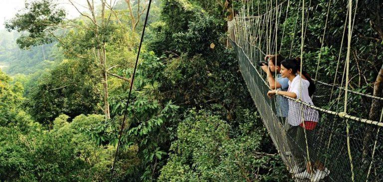 الطبيعة في ماليزيا