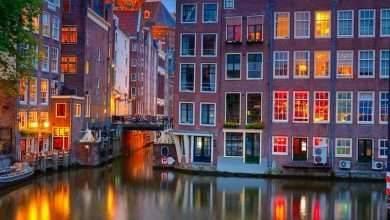 Photo of الطبيعة في هولندا .. الأماكن التي تحتاج إلى مشاهدتها في أرض الطبيعة وعبق التاريخ