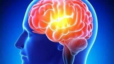 صورة فوائد الجنسنج للذاكرة