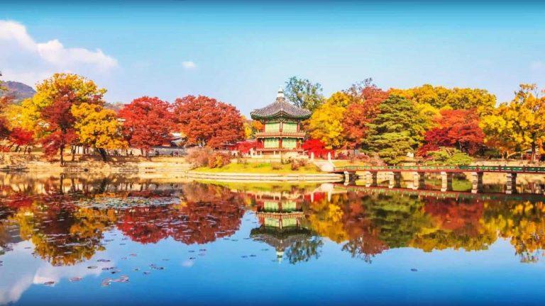 الطبيعة في كوريا الجنوبية