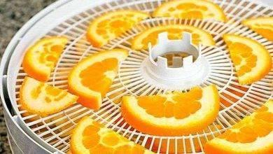 Photo of طريقة تجفيف البرتقال..تعرف على اكثر من طريقة لحفظ البرتقال المجفف