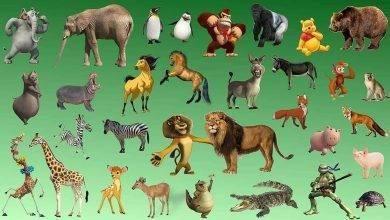 Photo of معلومات للأطفال عن الحيوانات… إليك بعض المعلومات المهمة للأطفال عن الحيوانات