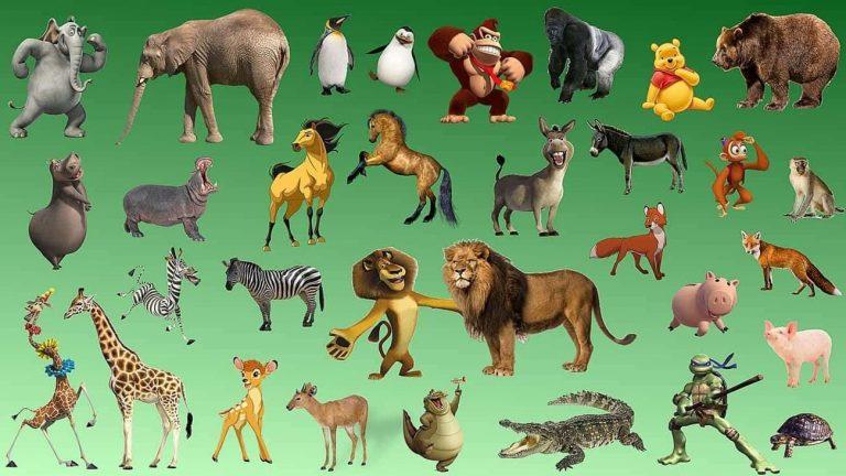 معلومات للأطفال عن الحيوانات