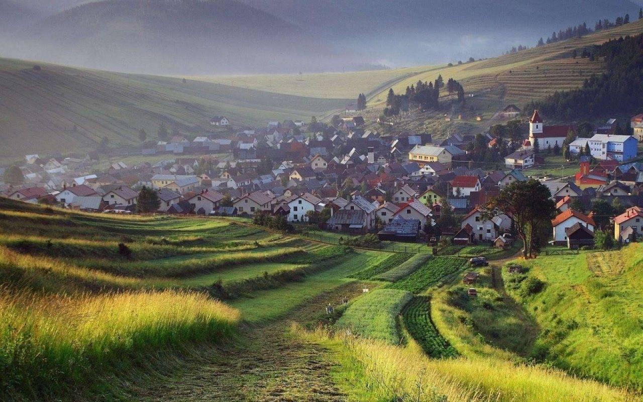 أهم الفواكة والزراعات في دولة سلوفاكيا