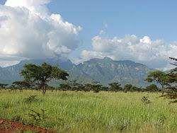 معلومات عن دولة أوغندا