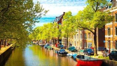 Photo of معلومات عن دولة هولندا…اهم الموارد الاقتصادية بها والكثافة البسكانية