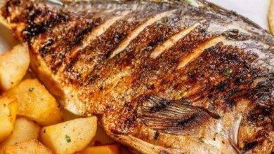 Photo of وصفات سمك … اشهر طرق تحضير السمك بوصفات مفيدة ومبتكرة وشهية