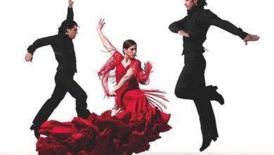 Photo of معلومات عن رقص الفلامنكو .. تعرف أكثر على رقص الفلامنكو ..