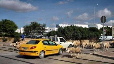 Photo of أبرز المعلومات عن دولة ليبيا