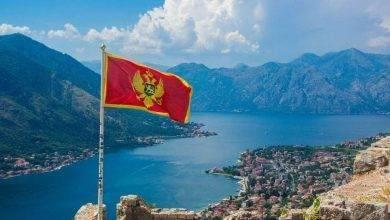 Photo of أشهر منتجات الجبل الأسود.. تعرف على أهم المنتجات التي يمكن شرائها عند زيارتك للجبل الأسود
