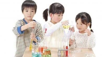Photo of طريقة تربية الأطفال في اليابان… تعرف على الطريقة اليابانية في تربية الأطفال