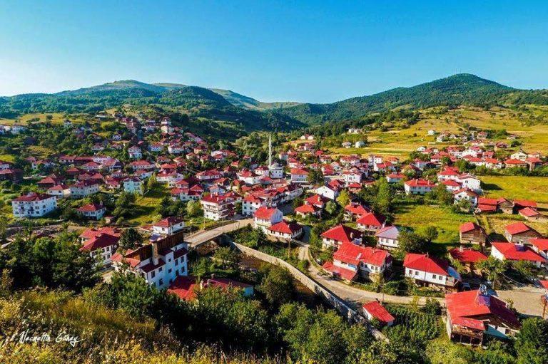 معلومات عن مدينة أوردو تركيا