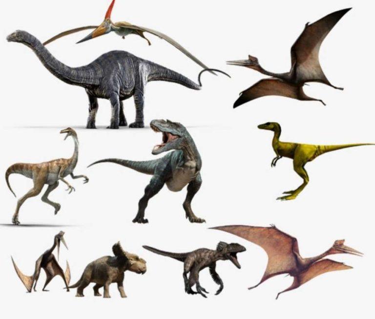 معلومات للأطفال عن الديناصورات