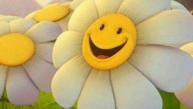 Photo of أفكار لليوم العالمي للسعادة.. إليك قائمة بأفكار بسيطة للاحتفال باليوم العالمي للسعادة