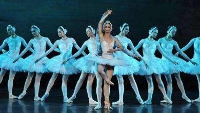 Photo of أنواع الرقص المسرحي… تعرف على أشهر 4 أنواع للرقص المسرحي