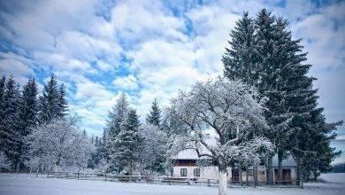 فيينا في الشتاء