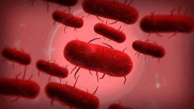 Photo of ماهو مرض الطاعون .. إليك مجموعة من الحقائق حول الطاعون أو مايعرف بالموت الأسود