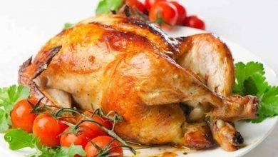 Photo of وصفات بالدجاج … تعرف علي طرق مختلفة لتحضير وصفات شهية ولذيذة بالدجاج