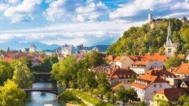 Photo of أشهر منتجات سلوفينيا.. المنتجات الأكثر شهرة وتصديراً في سلوفينيا