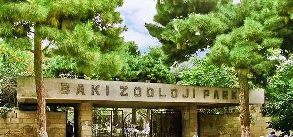 حديقة الحيوانات في باكو