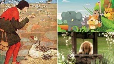 Photo of قصص عن القناعة للأطفال.. البيضة الذهبية والسلحفاة والطيور