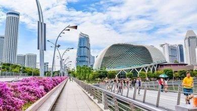 Photo of اشياء تشتهر بها سنغافورة… 9 اشياء تشتهر سنغافورة بها كثيرًا
