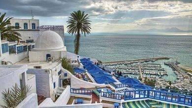 Photo of معلومات عن مدينة الحمامات تونس