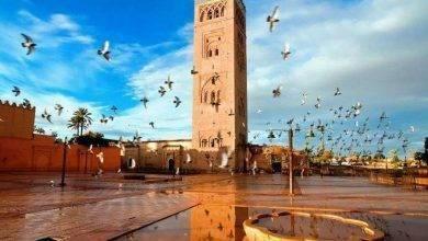 Photo of معلومات عن مدينة مراكش المغرب