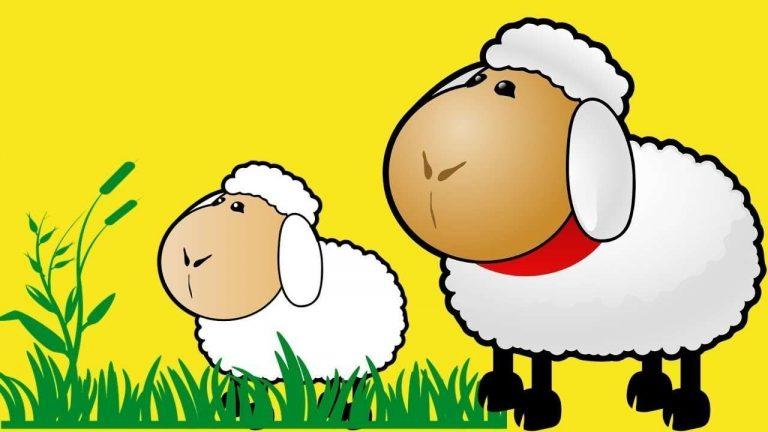 قصص للأطفال عن خروف العيد