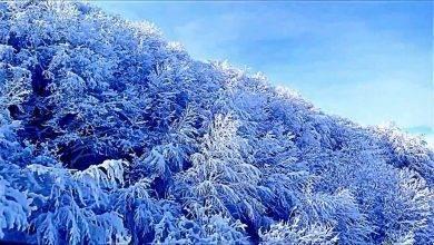 المناطق الثلجية في تركيا في الصيف