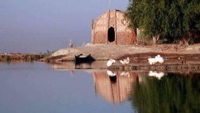 Photo of السياحة في اهوار العراق … تعرف على اهوار العراق أحد مواقع اليونسكو للتراث العالمي