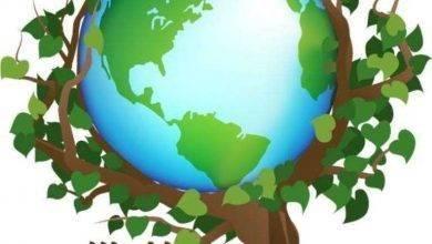 Photo of أفكار لليوم العالمي للبيئة.. إليك أفكار مبسطة للمشاركة في اليوم العالمي للبيئة
