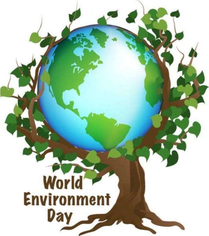 أفكار لليوم العالمي للبيئة