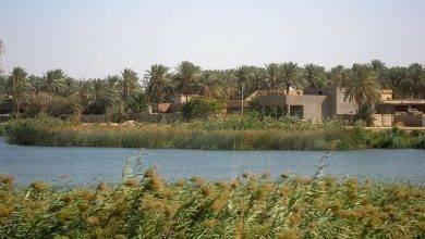 Photo of الحياة الريفية في العراق … تعرف على مظاهر الحياة الريفية في العراق وما يميزها