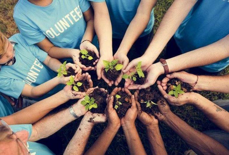 أفكار لليوم العالمي للتطوع