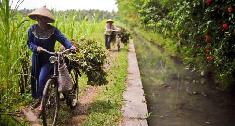 تأثير التنوع الجغرافي على الحياة الريفية في إندونيسيا