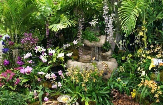 حديقة الأوركيد - حديقة الزهور في كوالالمبور