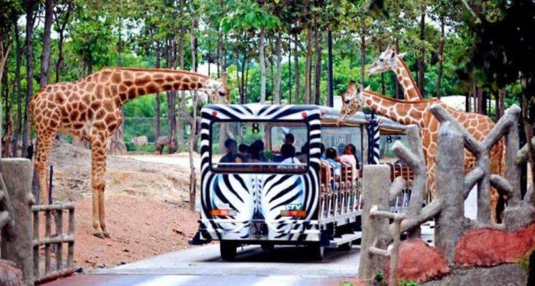 حديقة حيوانات سفاري ماليزيا